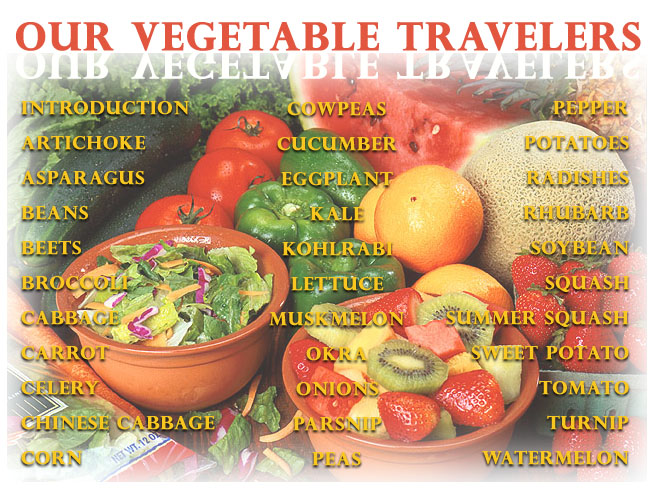 Navigation Map With List Of Garden Vegetables. Images