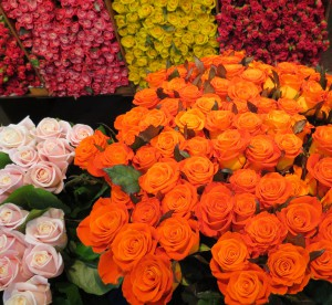 Roses at Korean flower market