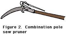 figure 2, combination pole saw pruner