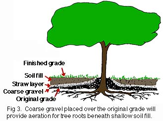 figure 3, coarse gravel overlay for aeration