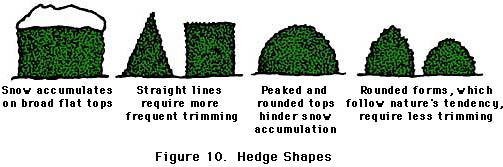 figure 10, hedge shapes