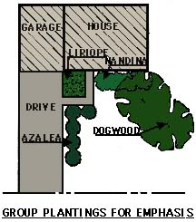 drawing showing group plantings used for emphasis