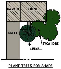 drawing showing trees planted for shade