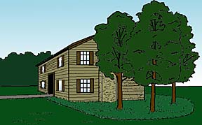 drawing showing a group of trees planted near a house