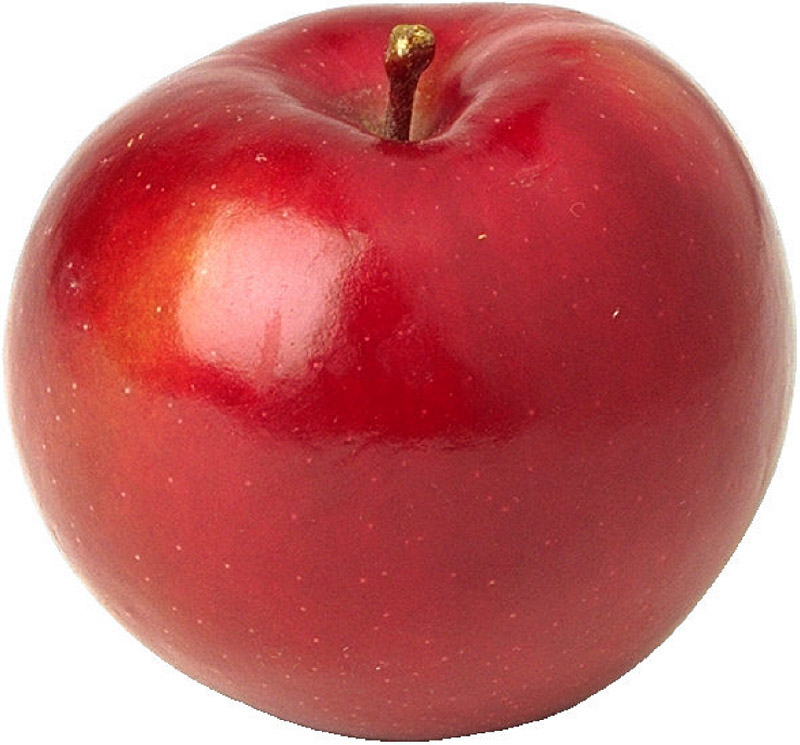 Apples are the most important temperate zone tree fruit in