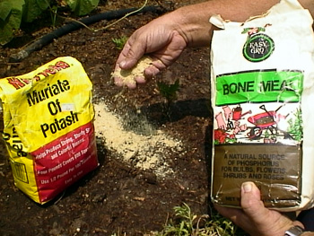 how to make smoke ring, how to get rid of moles from your lawn, how to get rid of veins,