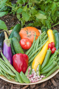 Garden to Kitchen - Tips for a Fresh and Tasty Harvest @ Texas A&M AgriLife Extension Service | Austin | Texas | United States