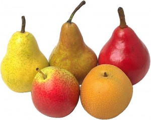 assortment of pears