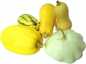 assortment of squash varieties